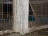 The cut-through mesh fence